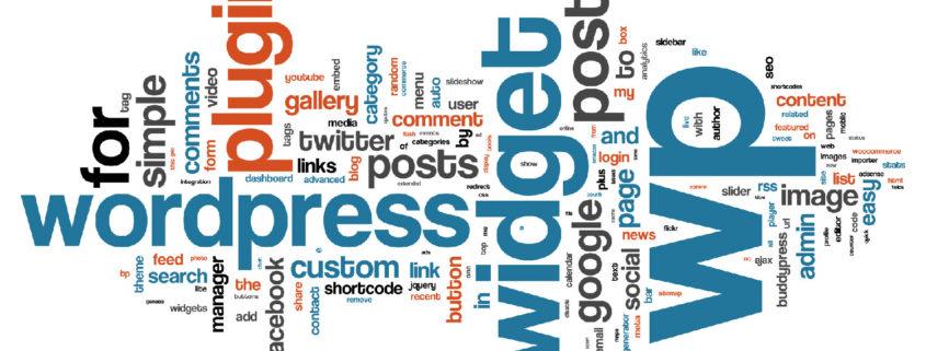 Wordpress CMS graphic